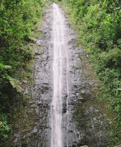 manoa falls & musubi | honolulu, hawaii via playswellwithbutter.com | manoa falls is an easy hike centrally located in oahu with tons of gorgeous lush tropical scenery leading up to a beautifully secluded 200-ft waterfall. great for an oahu adventure & beautiful photo ops along the way, manoa falls is absolutely a must-see for any traveler adventuring on oahu.
