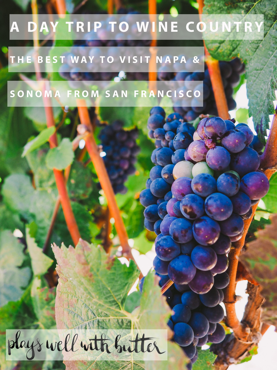 a day trip to wine country - napa & sonoma via playswellwithbutter