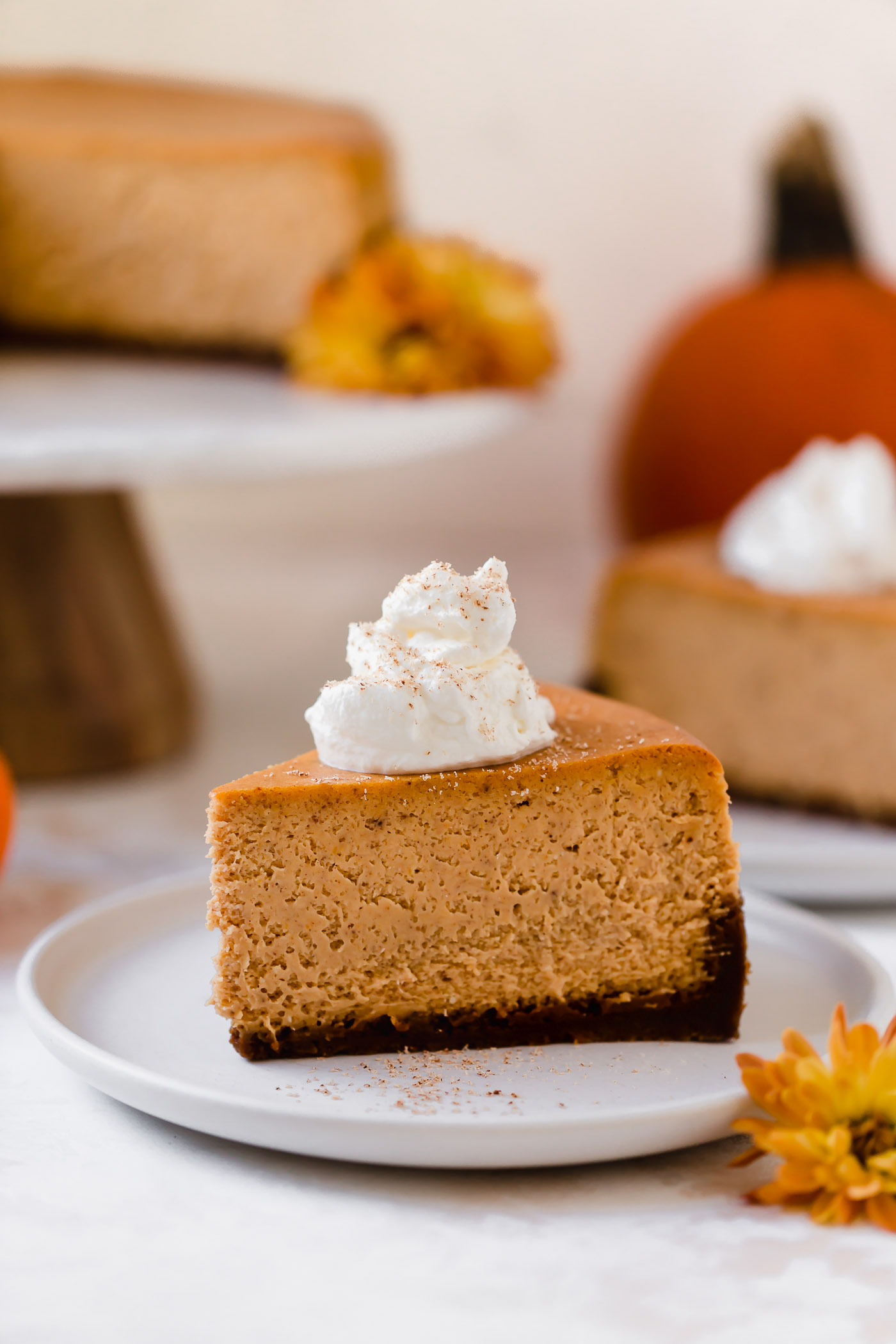 the perfect pumpkin cheesecake recipe! this pumpkin cheesecake has the perfect light & creamy texture, it's filled with pumpkin & pumpkin spices, & served on a super gingery gingersnap crust. the ultimate pumpkin dessert to serve at thanksgiving or friendsgiving dinner this year! #playswellwithbutter #pumpkincheesecake #pumpkincheesecakerecipe #bestpumpkincheesecake #pumpkincheesecakewithgingersnapcrust #pumpkindesserts #bestpumpkindesserts #thansksgivingdessertrecipes #friendsgivingdessertrecipes