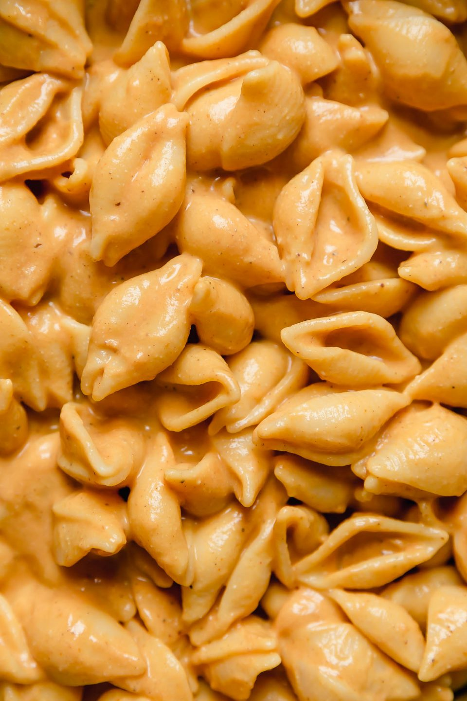 Close up shot of vegan pumpkin mac and cheese.