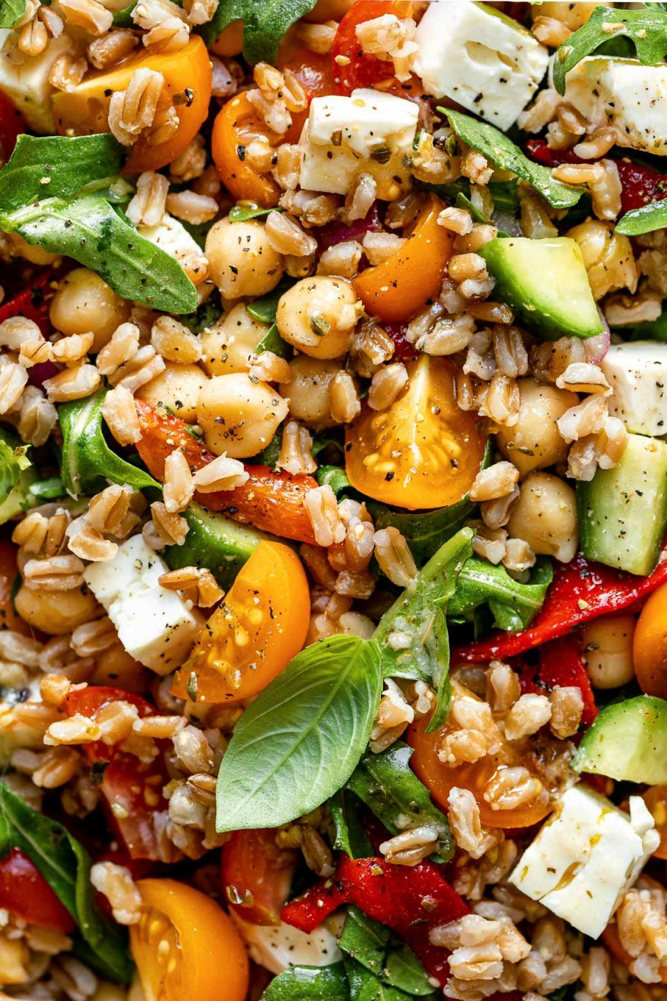 Close up shot of Greek farro salad, tossed together & topped with tomatoes, chickpeas, & fresh herbs.