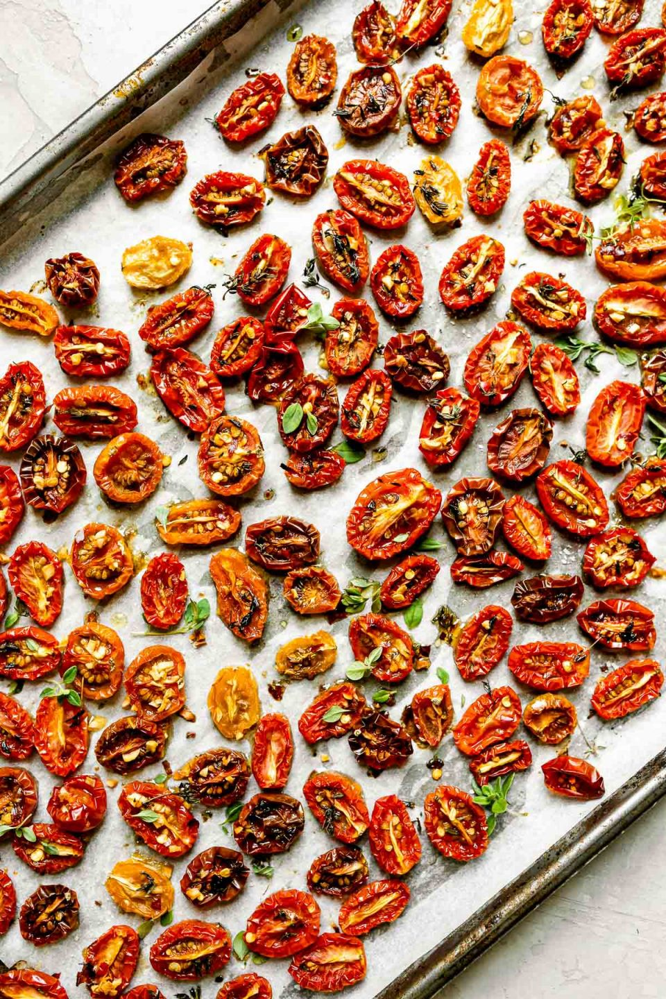 A close up of slow roasted cherry tomatoes arranged on a sheet pan lined with white parchment paper & sprinkled with fresh herbs.