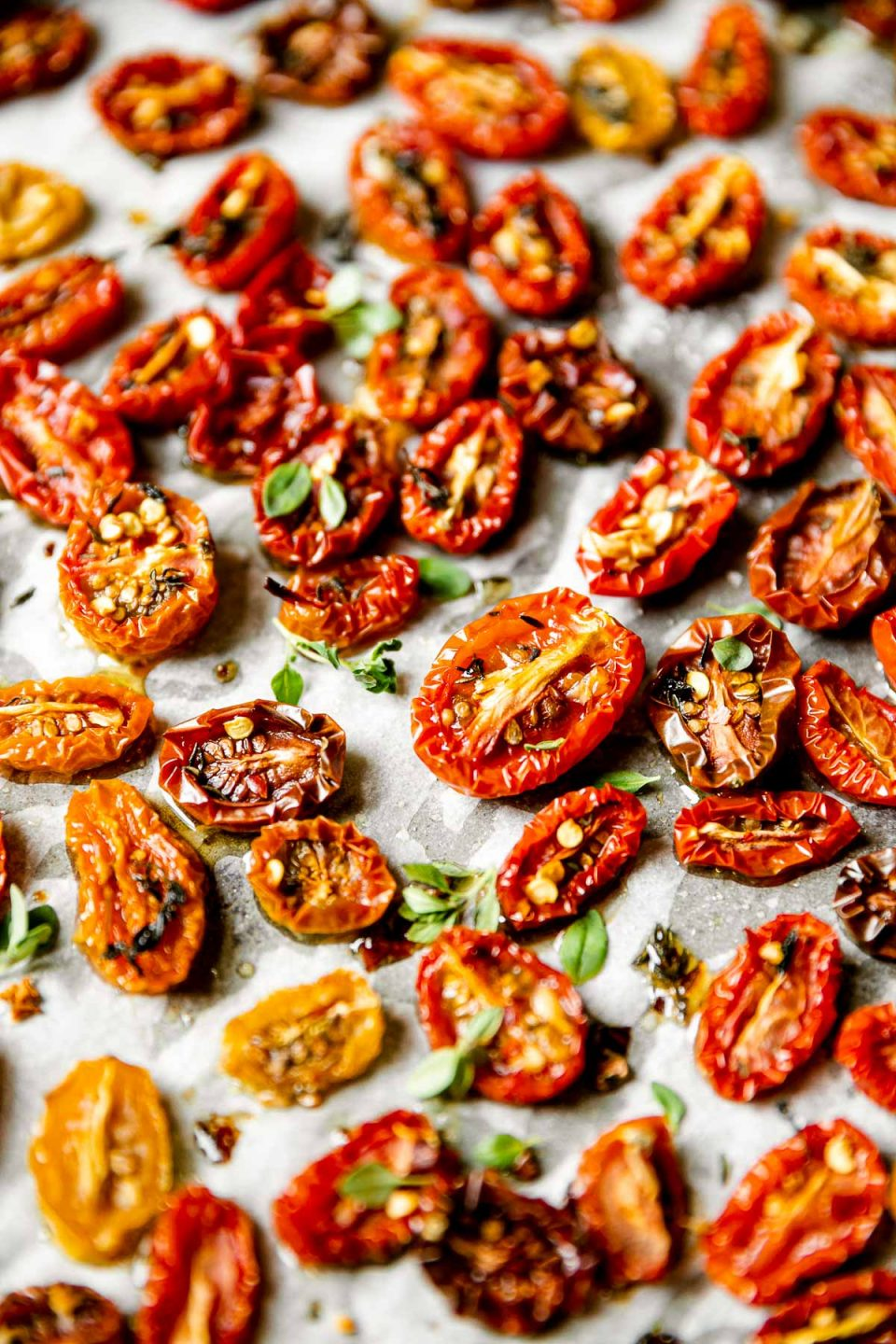 A close up and angled shot of slow roasted cherry tomatoes arranged on a sheet pan lined with white parchment paper & sprinkled with fresh herbs.